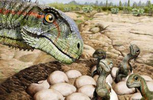 Ilustracion huevos de Mussaurus