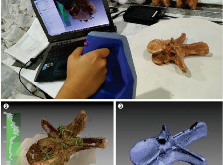 Técnicas de Escaneo 3D